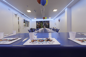 Super Hero Party Room
